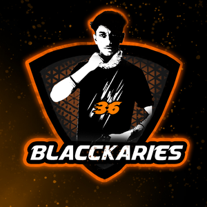 BlacckAries
