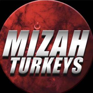 Mizah Turkeys