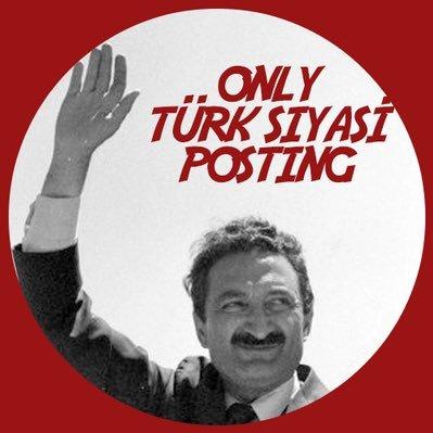 only türk siyasi posting